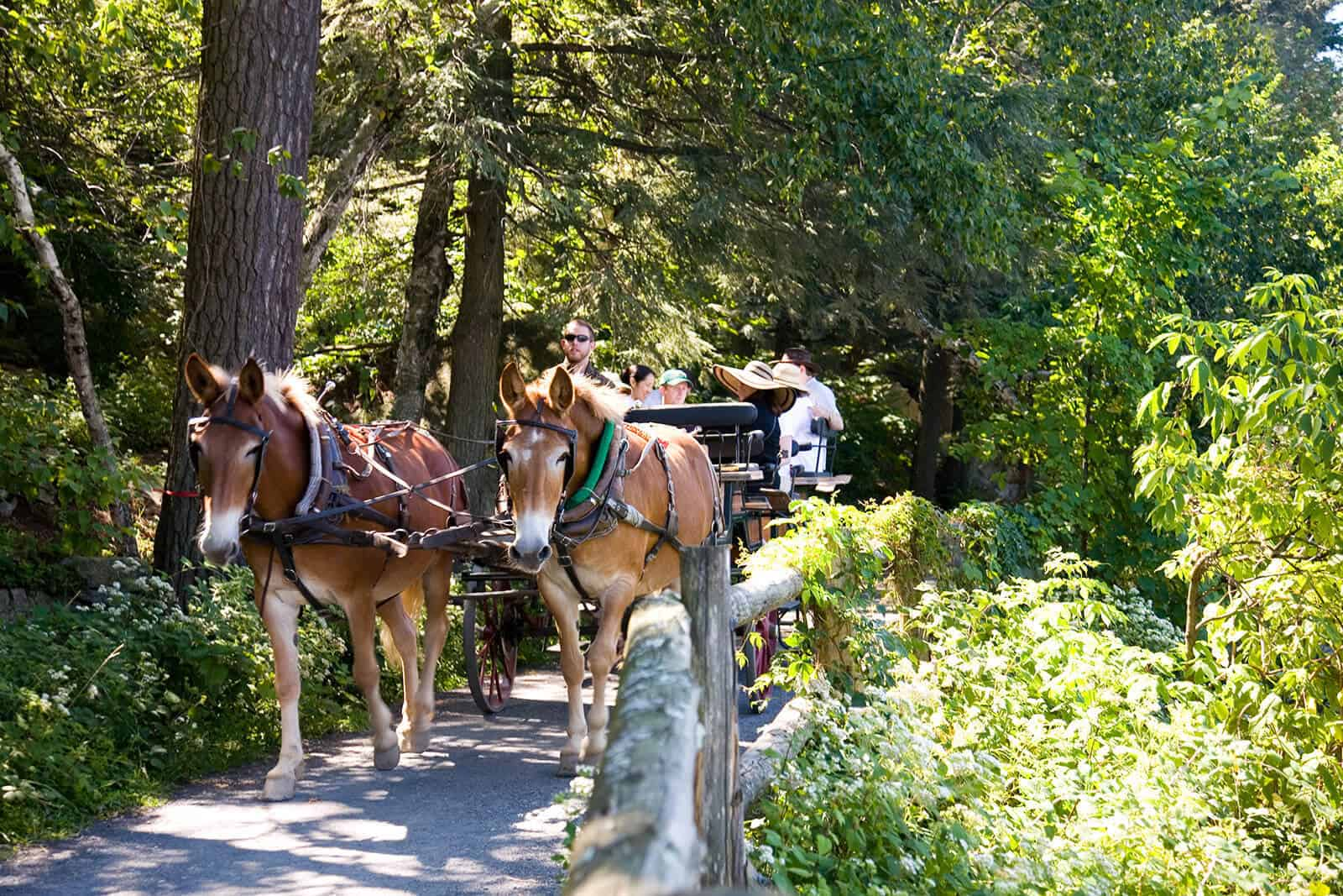 Carriage Rides - Hudson Valley - Mohonk Mountain House