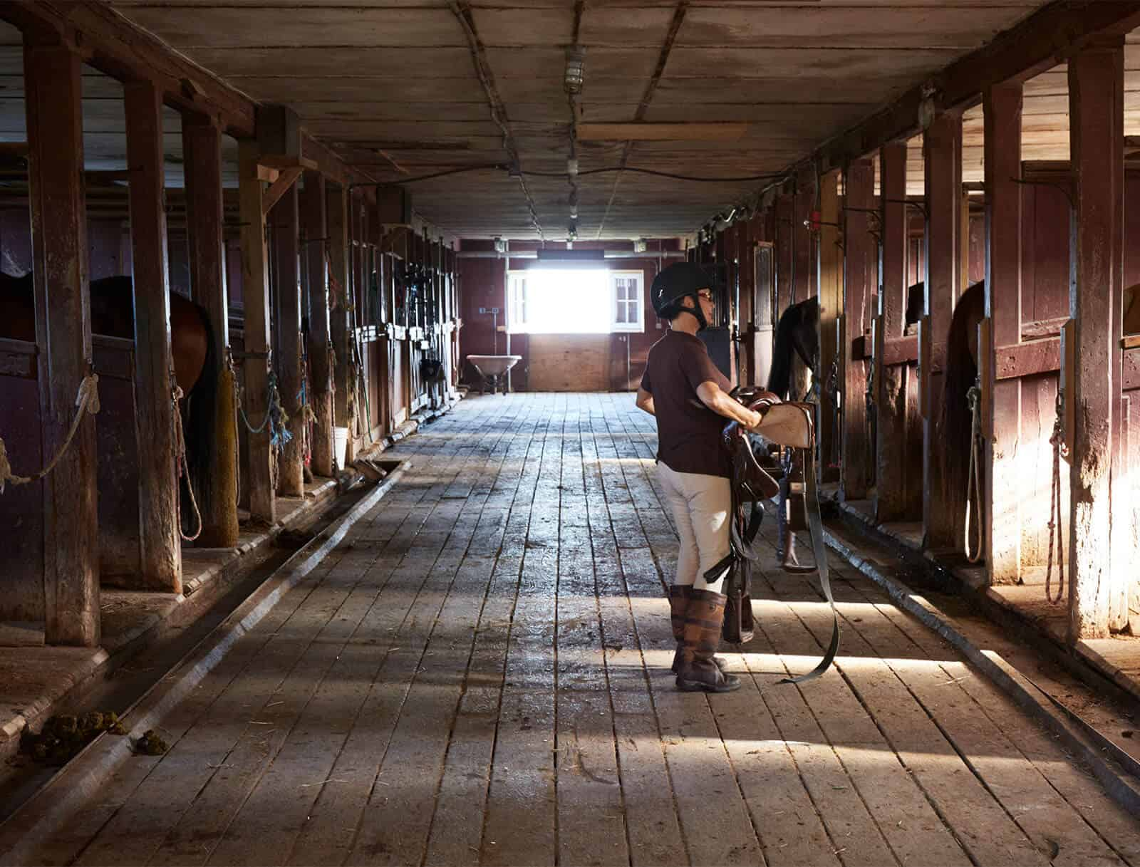Horse stables at Mohonk
