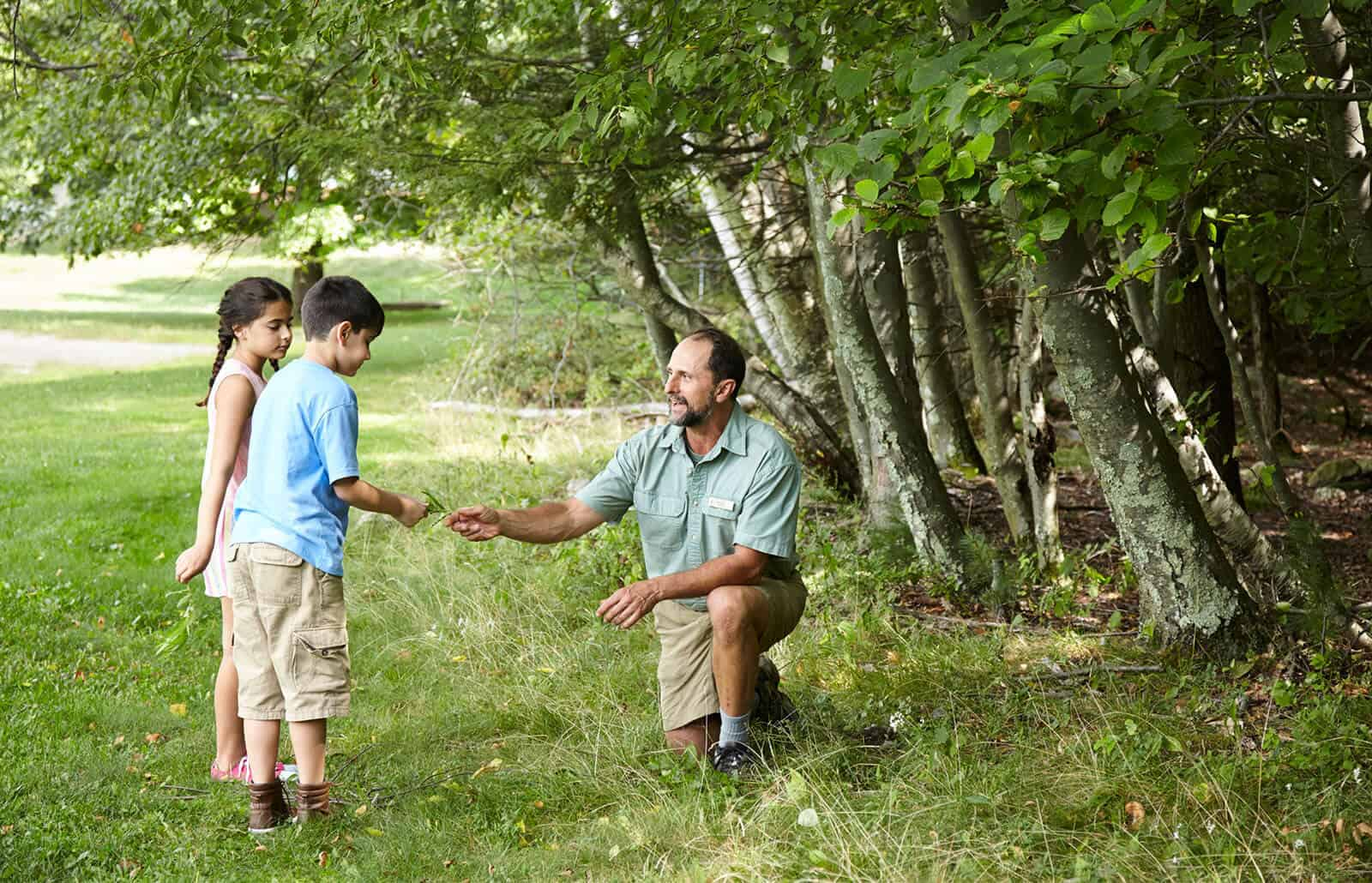Naturalist showing plants to kids