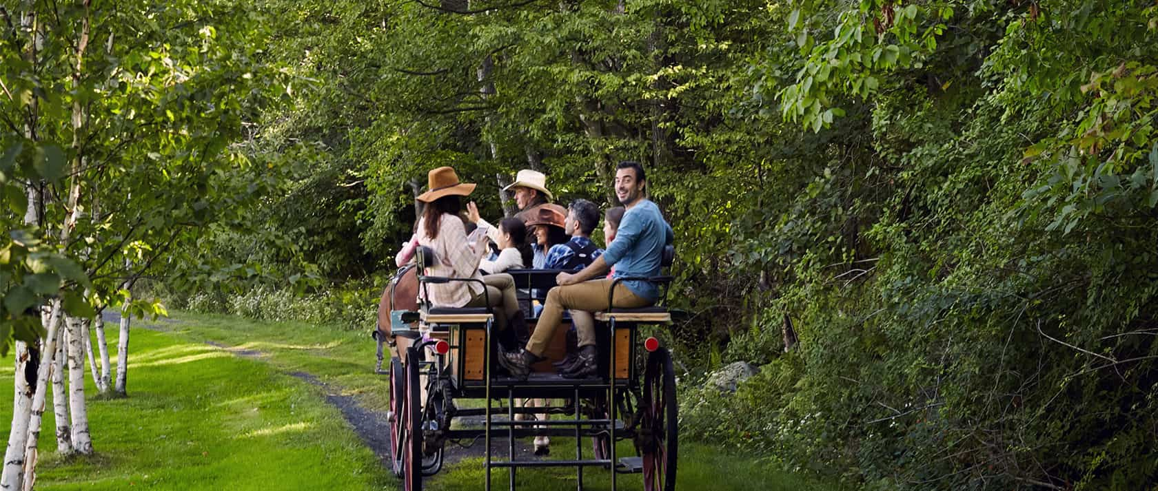 Carriage ride group
